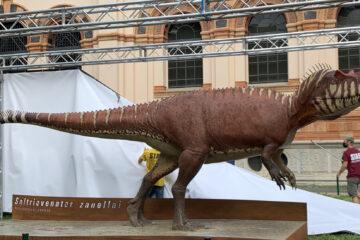 Il contributo di Bat-Tech alla nuova mascotte per il Museo di Storia Naturale di Milano